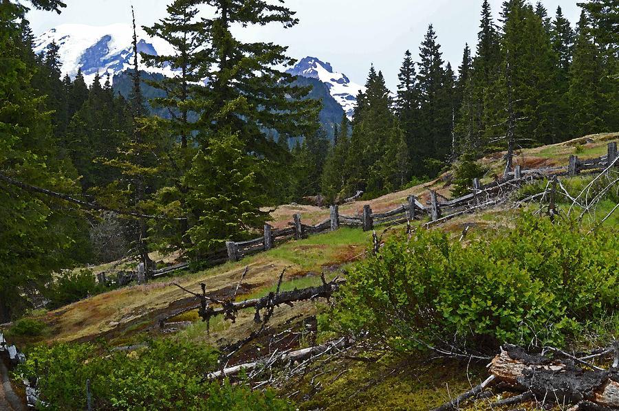 Mt. Trails Photograph by Shannon West