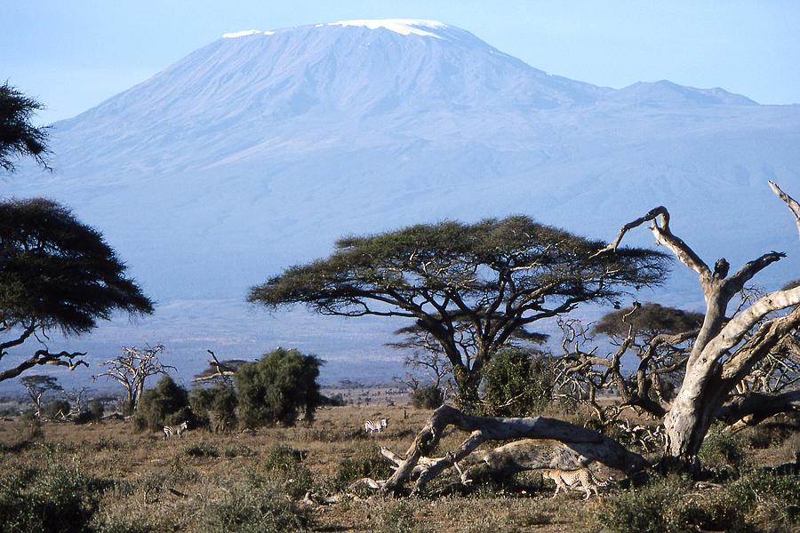 Worsley Photograph - Mt.kilimanjaro by Wade Worsley