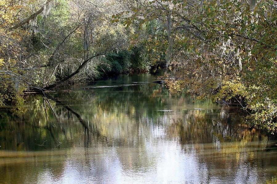Muckalee Creek Photograph - Muckalee Creek by Jerry Battle