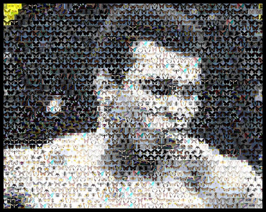 Fighter Mixed Media - Muhammad Ali Butterfly Bee Mosaic by Paul Van Scott