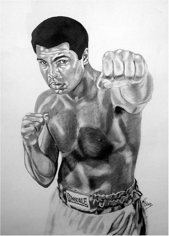 Muhammad Ali Drawings