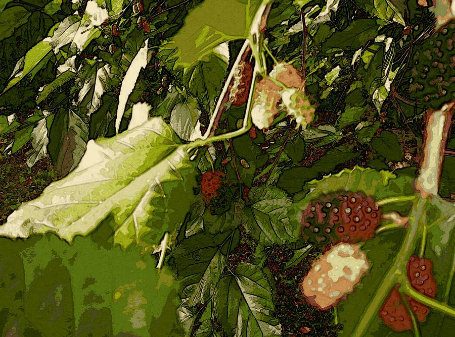 Mulberry Moment by Winsome Gunning