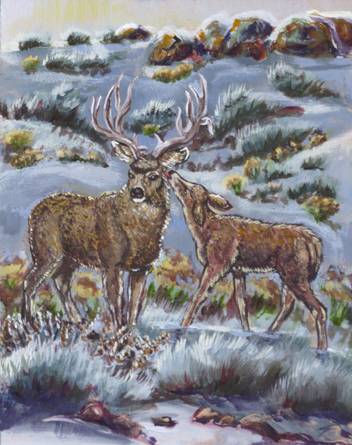 Animals Painting - Mule Deer Lovers From River Mural by Dawn Senior-Trask