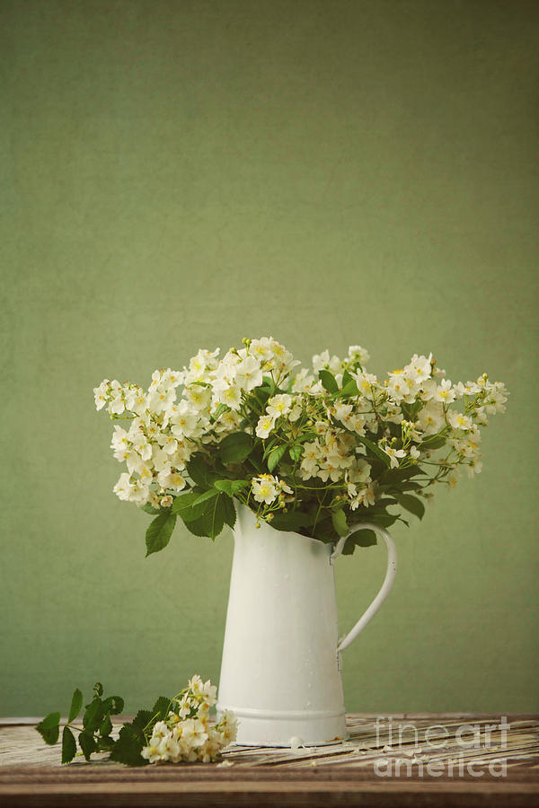 Multiflora Rose In A Rustic Vase Photograph