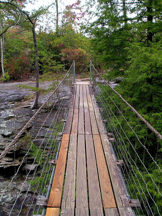Multiplank Bridge Photograph by Amanda Hendricks