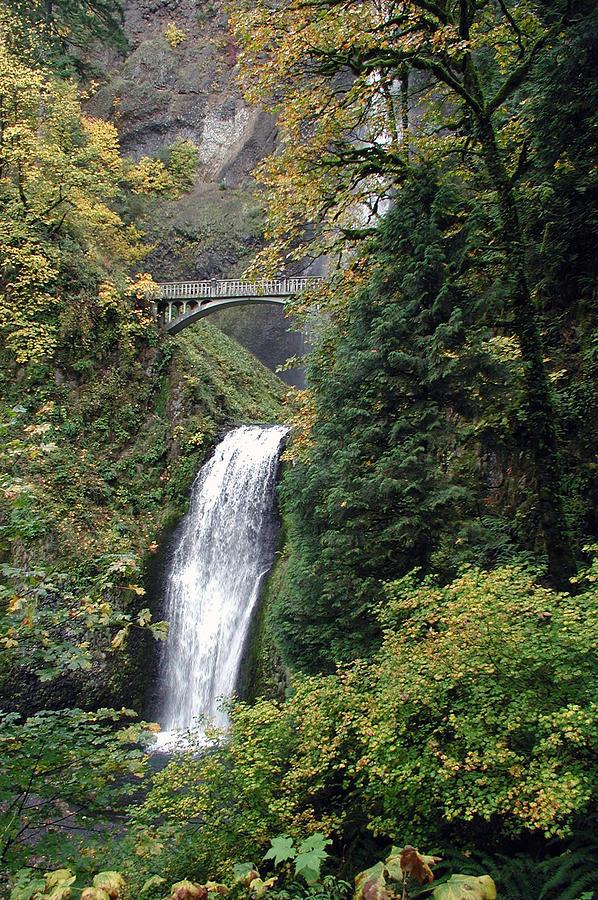 Multnomah Falls 3 Photograph