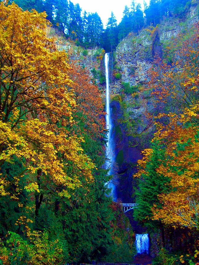 multnomah falls and fall colors photograph by scott carda