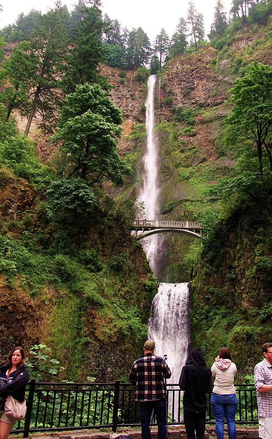 Multnomah Falls, Columbia River Gorge, OR by Michael Courtney
