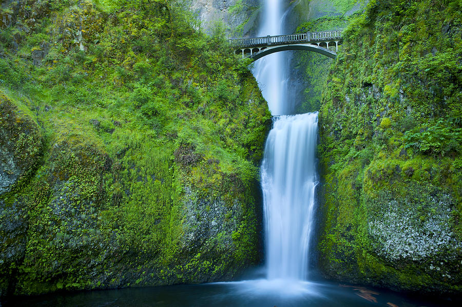 Multnomah Falls Photograph - Multnomah Falls by Don and Bonnie Fink