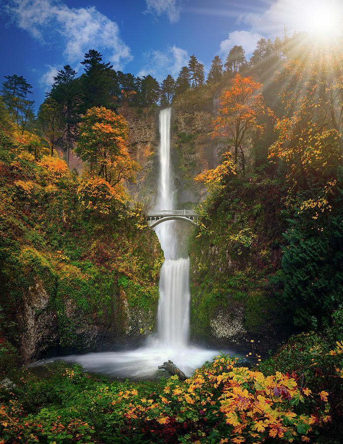 Multnomah Falls In Autumn Colors -panorama Photograph