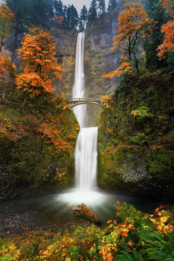 Oregon Photograph - Multnomah Falls In Autumn Colors by William Freebilly photography