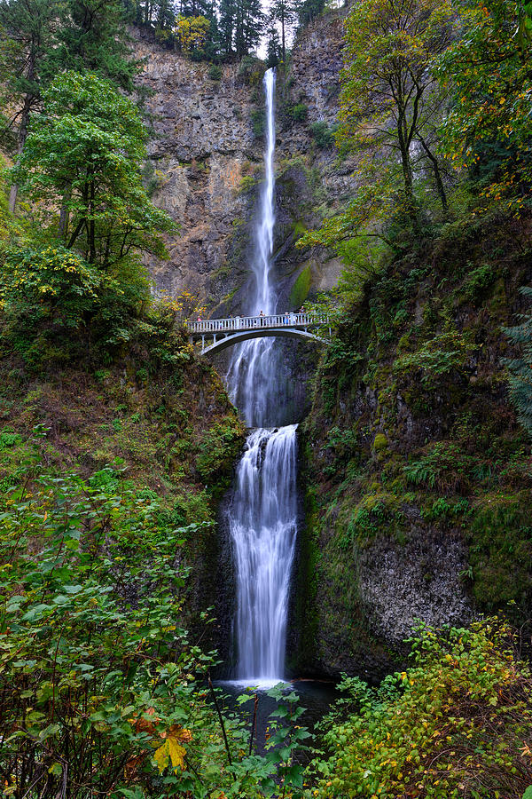 Multnomah Falls by Mark Whitt