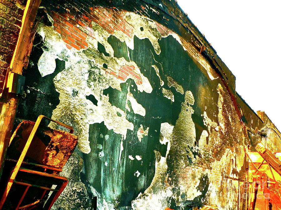 Free Standing Wall Photograph - Mural Of Destruction by Chuck Taylor