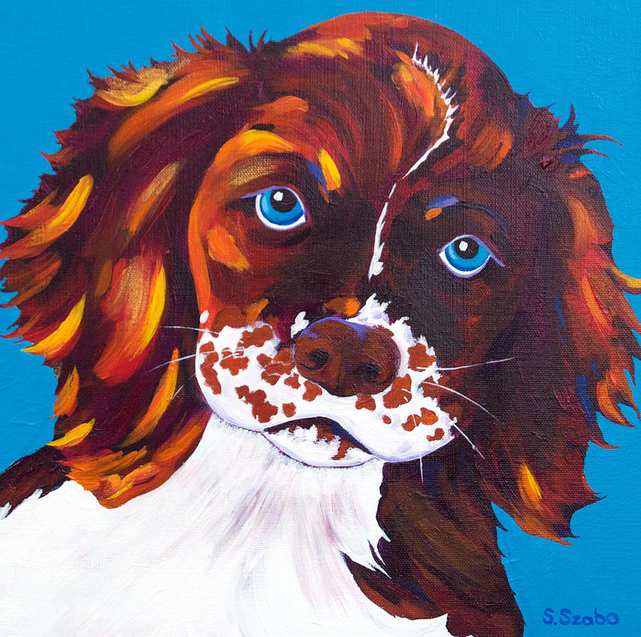 Cocker Spaniel Painting - Murphy by Susan Szabo