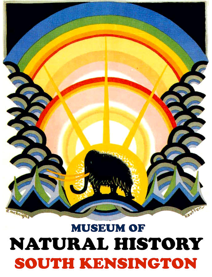 Museum Painting - Museum Of Natural History, South Kensington by Long Shot
