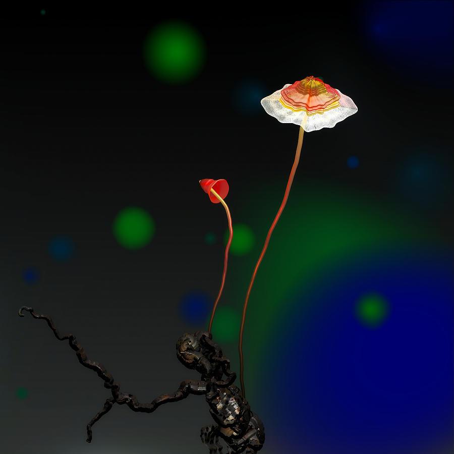 Mushroom Digital Art - Mushroom 1 by GuoJun Pan