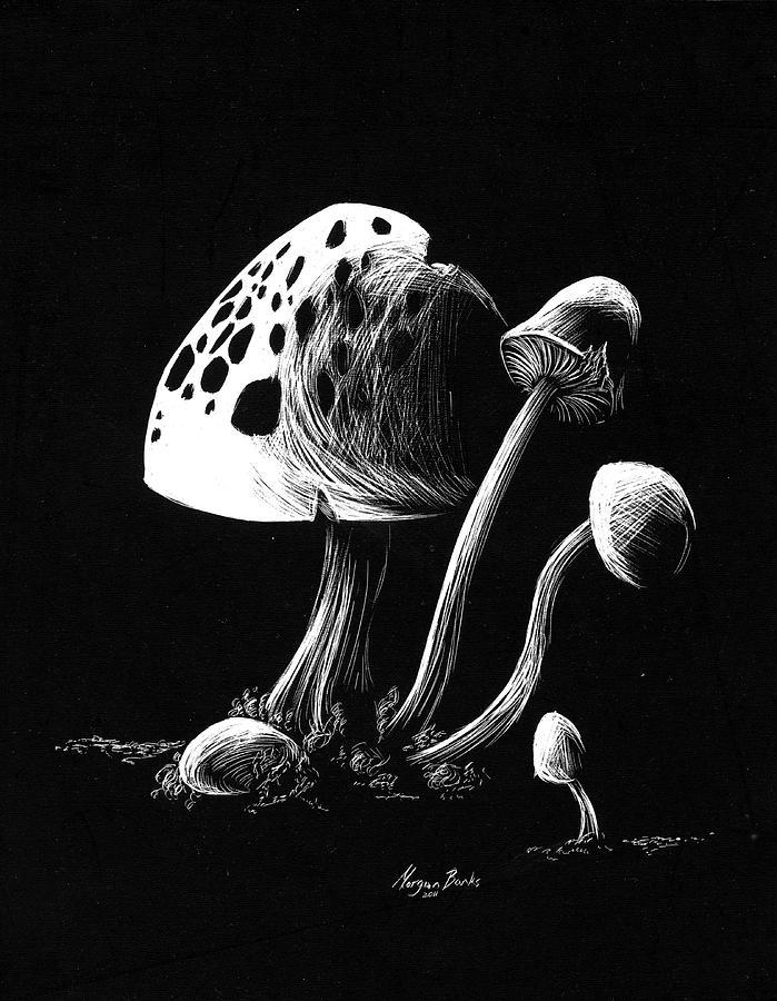 Mushroom Relief - Mushroom Patch by Morgan Banks