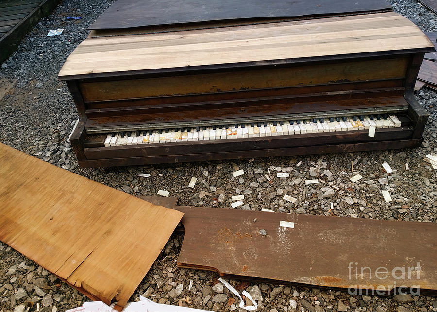 Piano Photograph - Music Waste  by Steven Digman