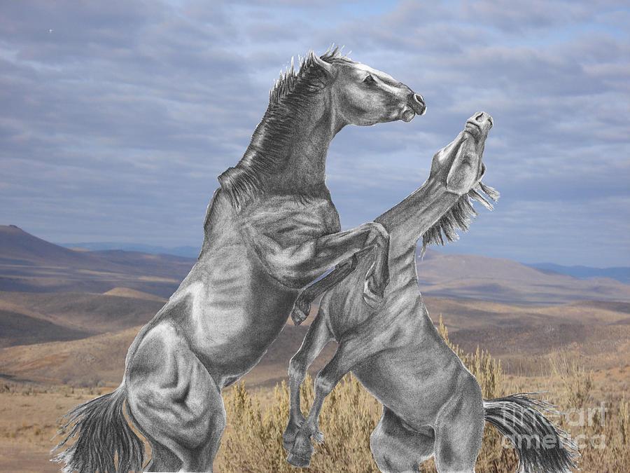 Horses Digital Art - Mustang Battle by Russ  Smith