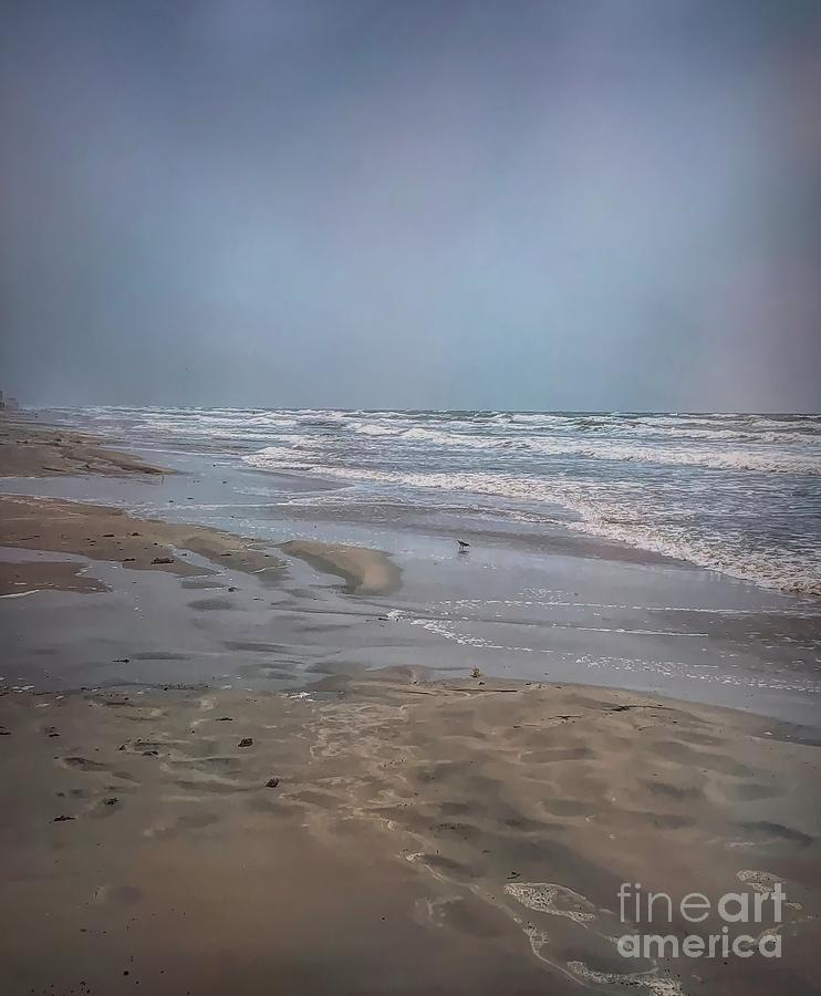 Mustang Island Beach: Mustang Island Shore Photograph By Luther Fine Art