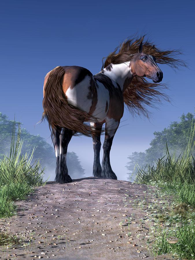 Mustang Trail Digital Art