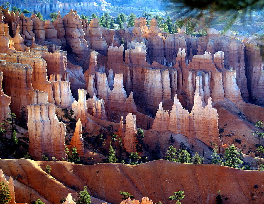 Bryce Canyon National Park Photograph - Muted Bryce by Marty Koch