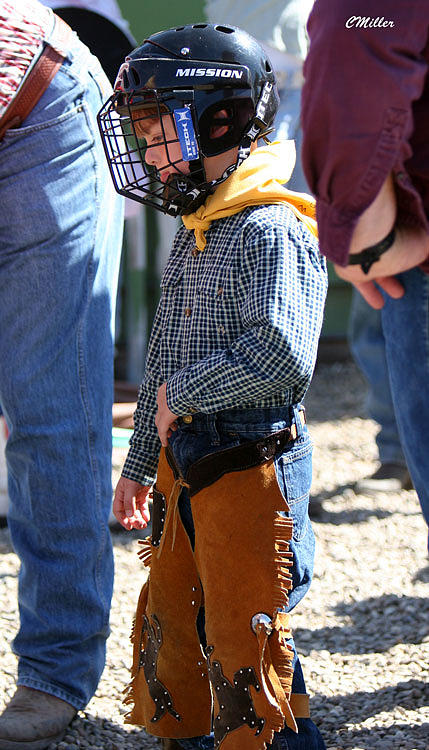 Rodeo Photograph - Muttin Buster.. by Carol Miller