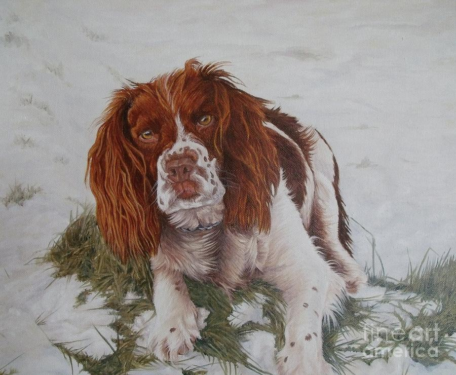 Dog Painting - Muttley-the Best Springer Spaniel by Pauline Sharp