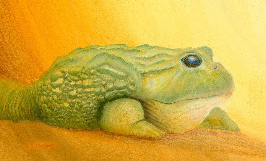 My African Bullfrog Painting