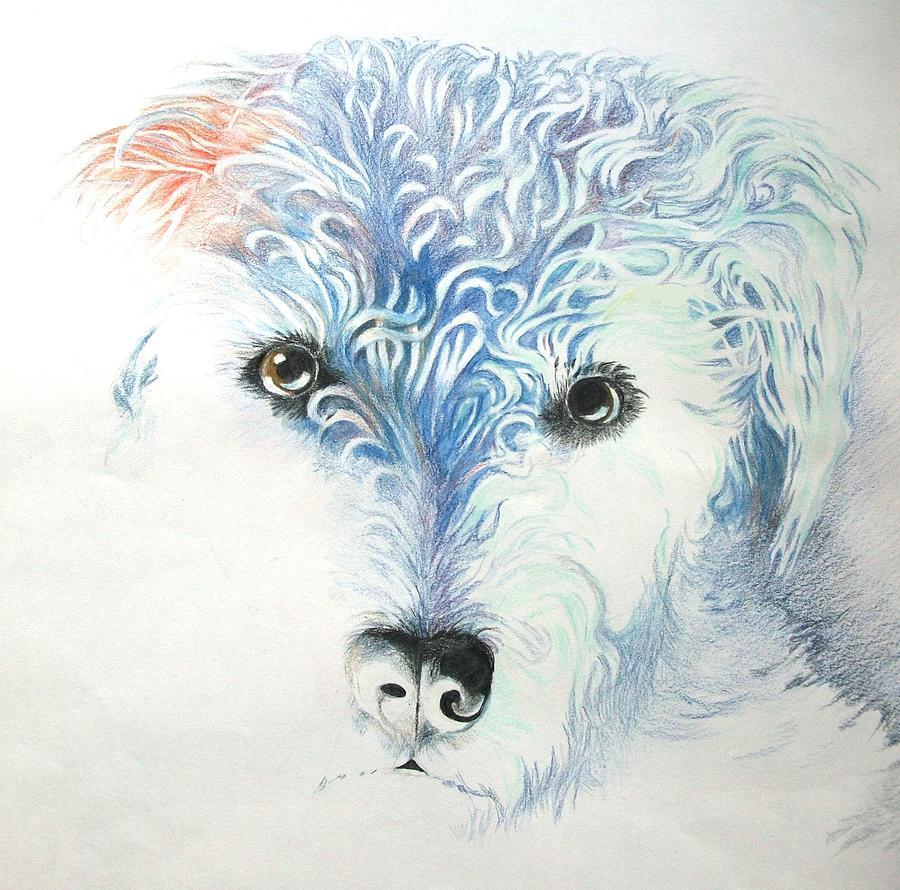 Dogs Drawing - My Best Friend by Alan Pearson