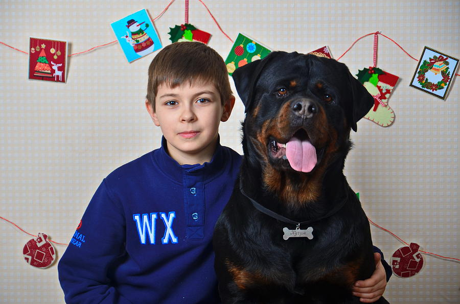 Animals Photograph - My Brother And The Dog by Maria Kozmina