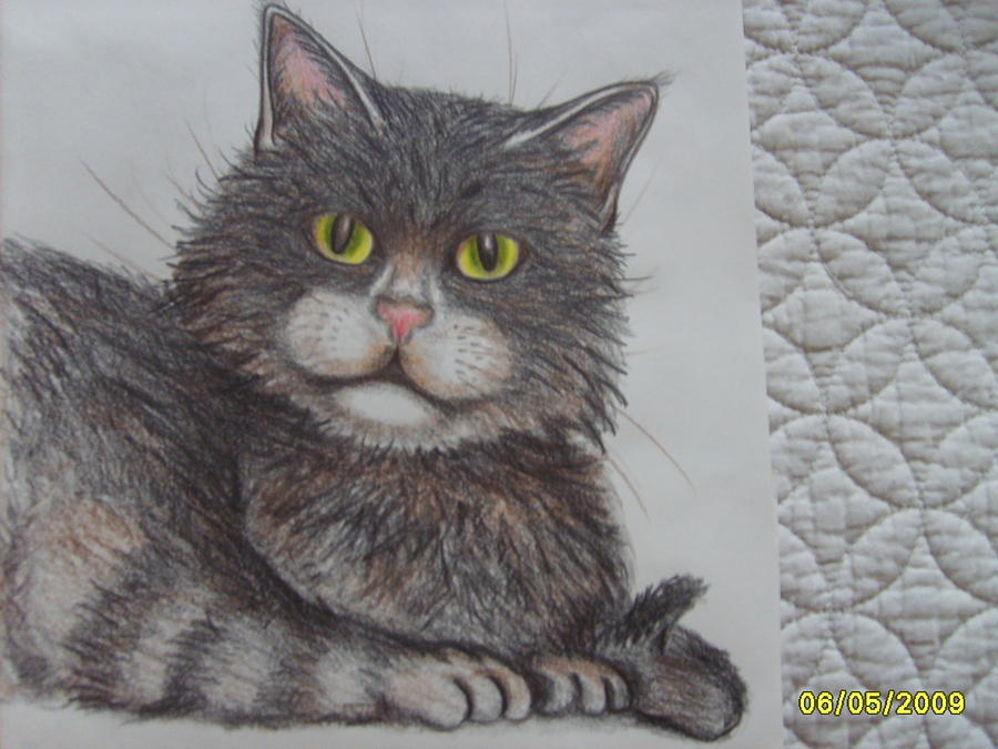 Animals Drawing - My Fifi by Aimee Ley