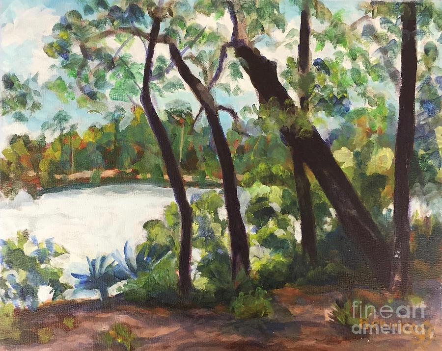 My Florida Neighborhood Again by Jan Bennicoff