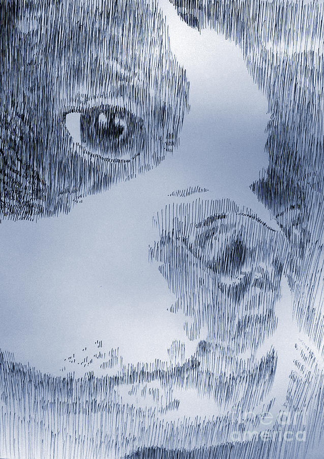 Boston Terrier Drawing - My Friend by Robbi  Musser