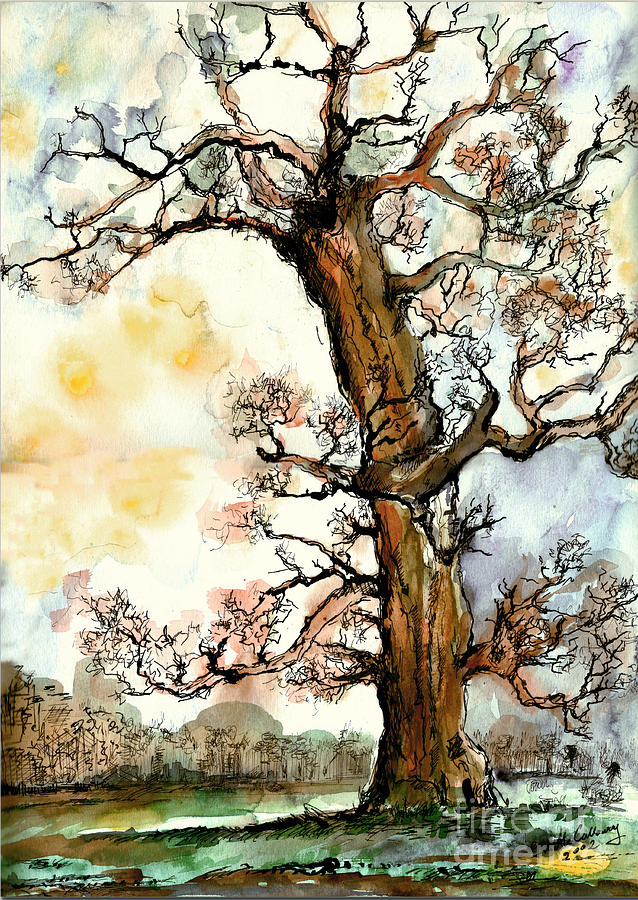 My Friend The Tree by Ginette Callaway