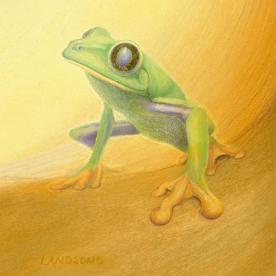 My Frog Painting