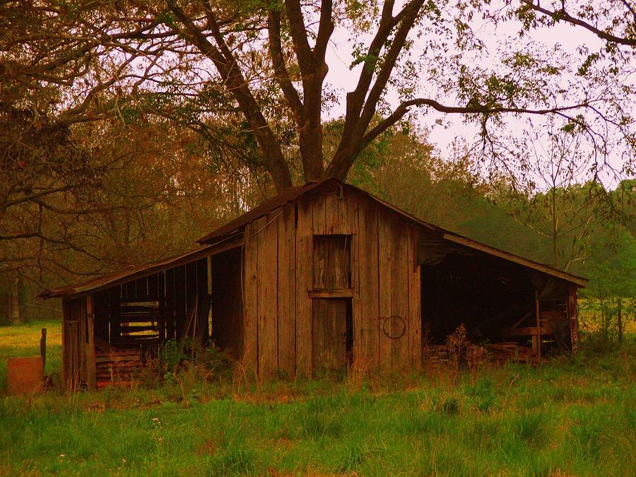 Barn Photograph - My Georgia Barn by Judy  Waller
