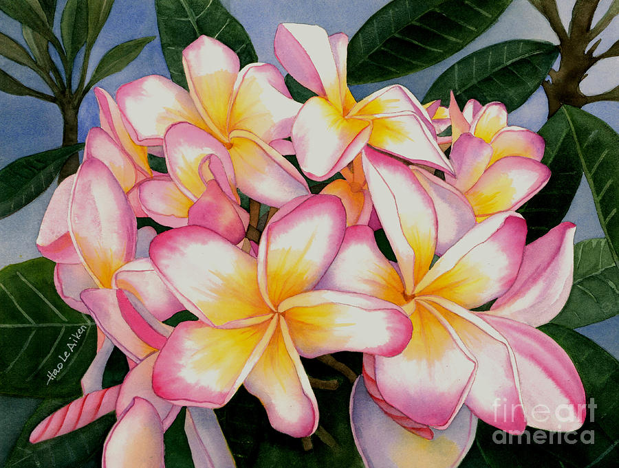 My Jenny - Plumeria Watercolor by Hao Aiken