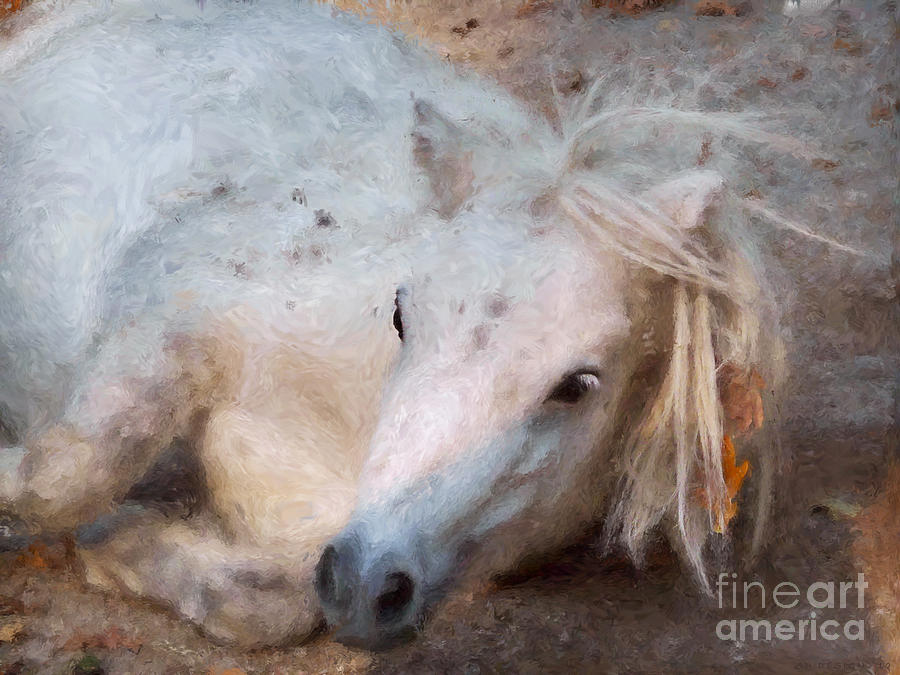 Pony Mixed Media - My Little Horse by Angela Doelling AD DESIGN Photo and PhotoArt