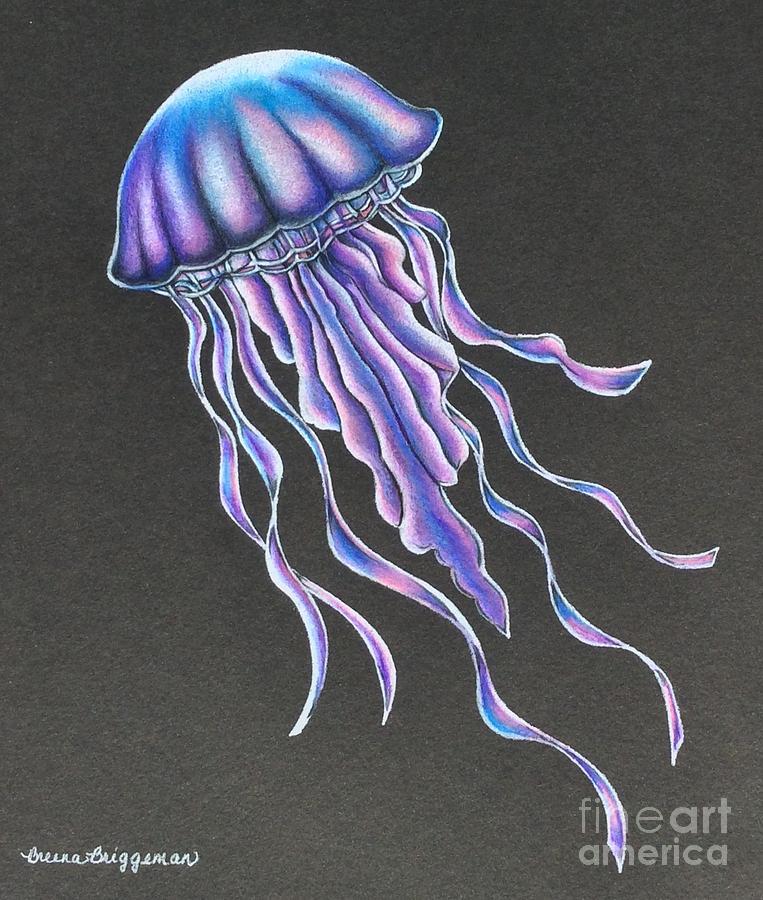 My Little Jellyfish Drawing by Breena Briggeman