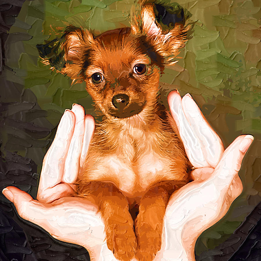 Pet Painting - My Lovely Puppy by Irene Pet Artist