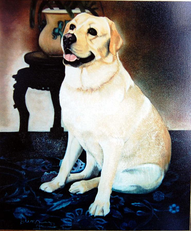 Pet Painting - My Old Friend by Blima Efraim