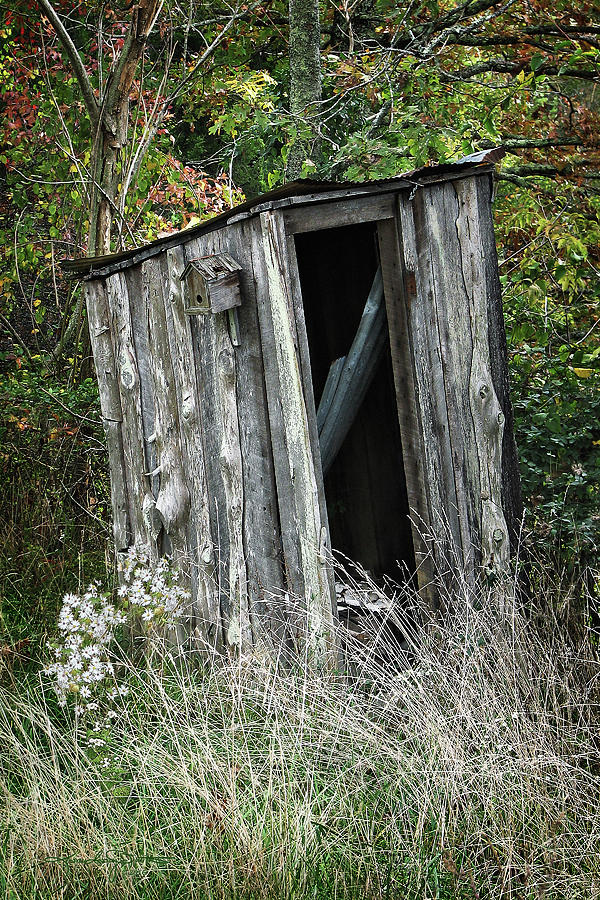 Outhouse Photograph - My Roof Never Leaks When It Doesnt Rain by Karen Casey-Smith
