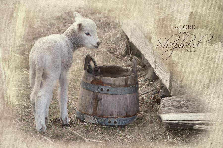 My Shepherd by Robin-Lee Vieira