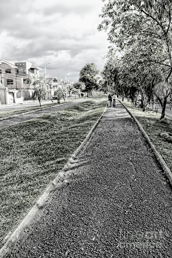 Walk Photograph - My Street II by Al Bourassa