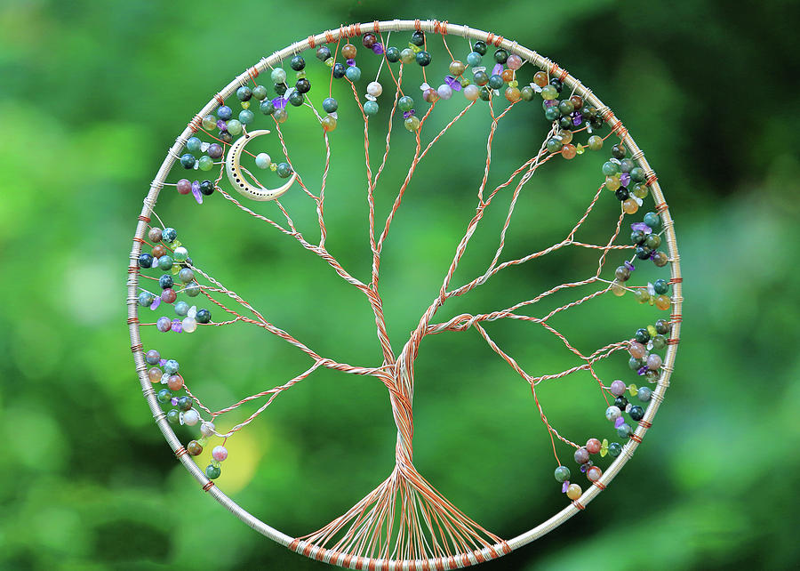 My Tree of Life by PJQandFriends Photography