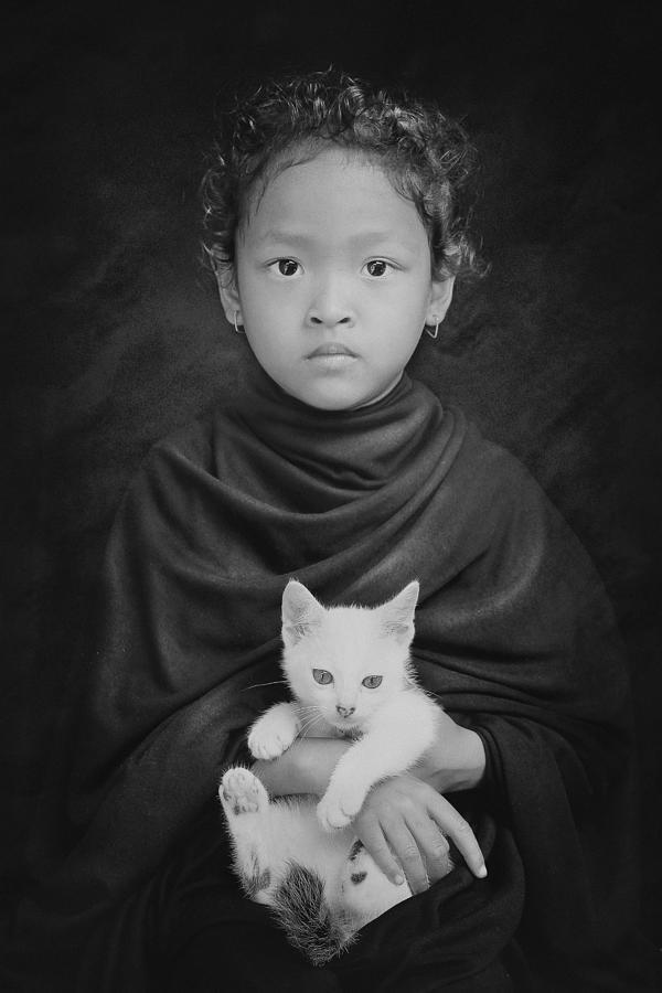 Cat Photograph - My White Cat by Jay Satriani
