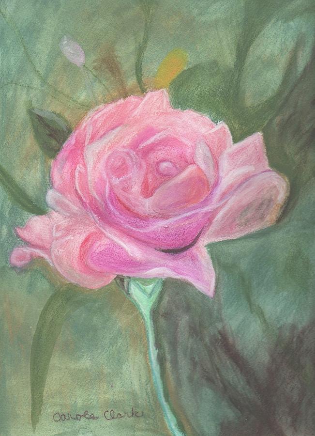 Pink Pastel - My Wild Irish Rose by Carole Clark