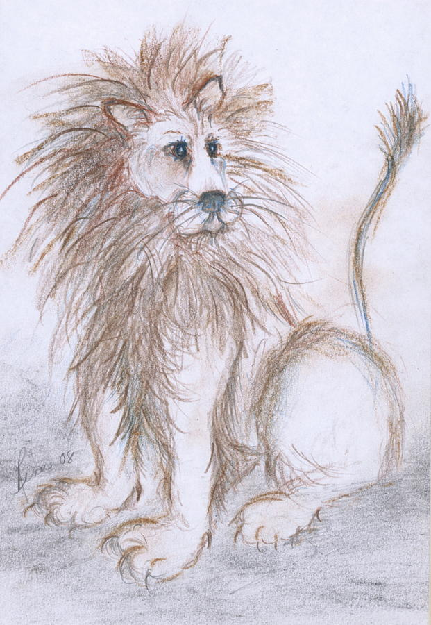 Lions Drawing - Myas Lion by Renee Catherine Wittmann