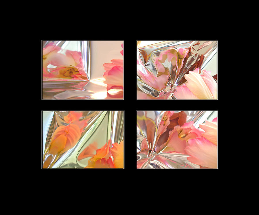 Tulips Photograph - Mylar Reflections Of Tulips by Patricia Whitaker